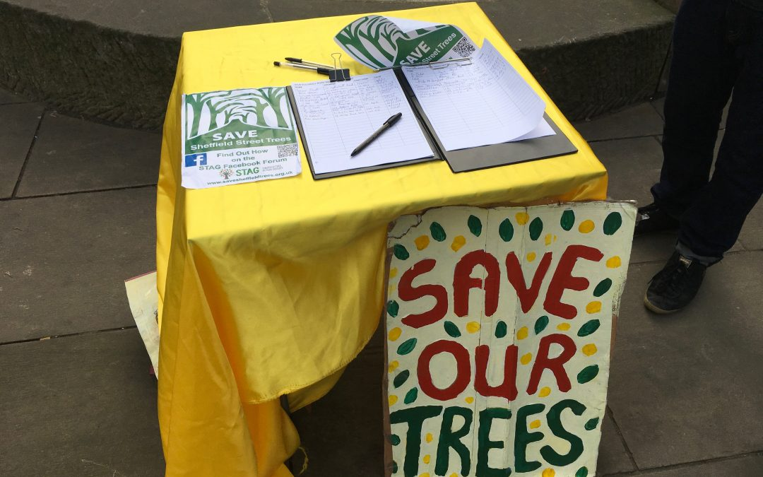 Tree petition in Sheffield City Centre