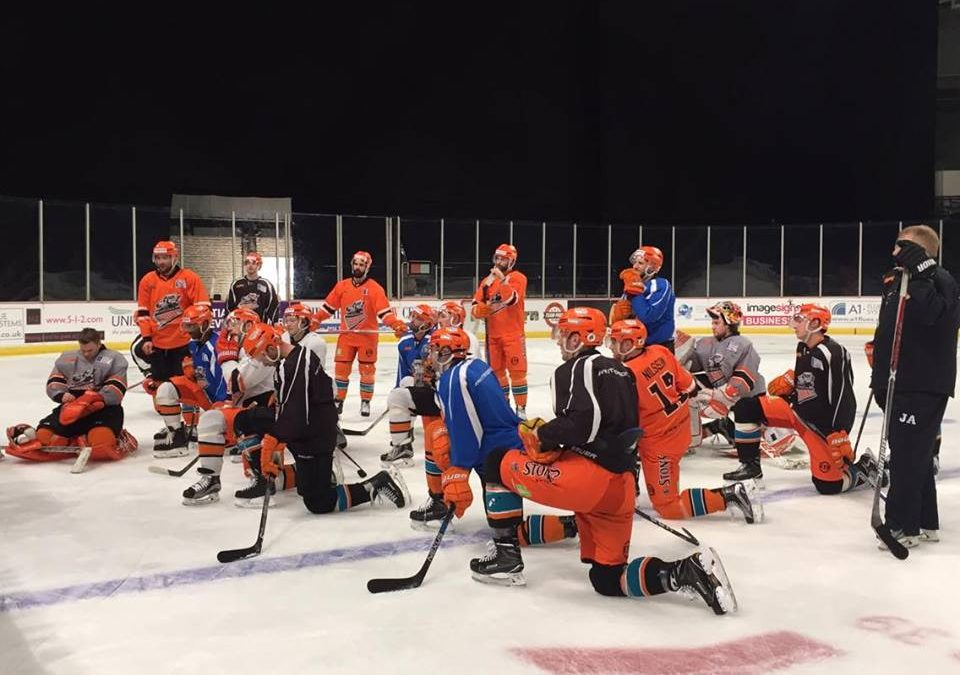 VIDEO: Sheffield Steelers aiming for a championship win