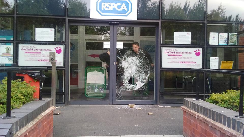 Vicious break-in leaves RSPCA charity workers in shock
