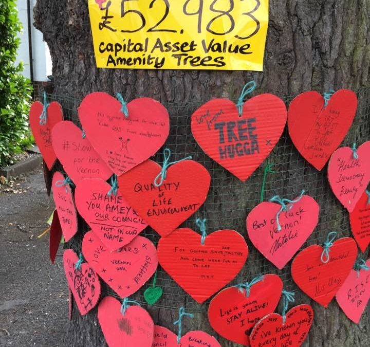 Vernon Oak could be saved by Trees for Cities charity