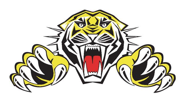 Sheffield Tigers fail in promotion bid