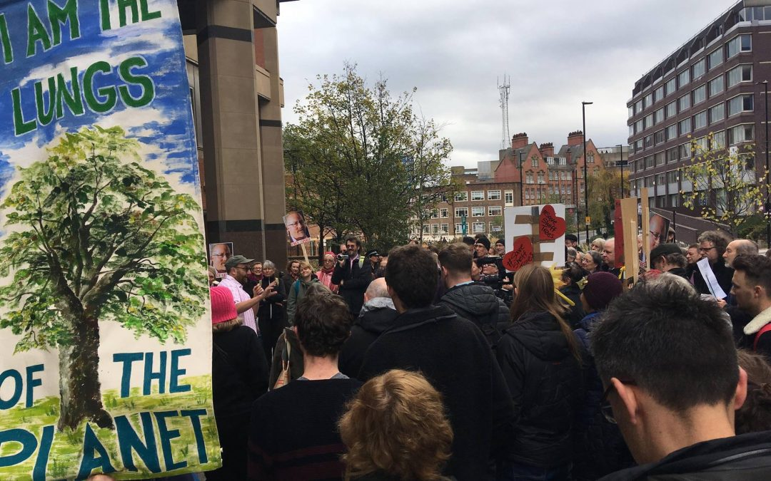 Tree campaigner given three month suspended prison sentence
