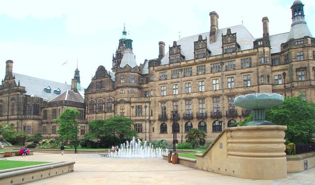 New tree charter leaves Sheffield people underwhelmed