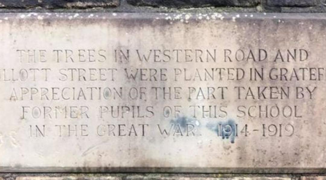 Armistice memorial event to raise awareness to save Sheffield's living war memorial