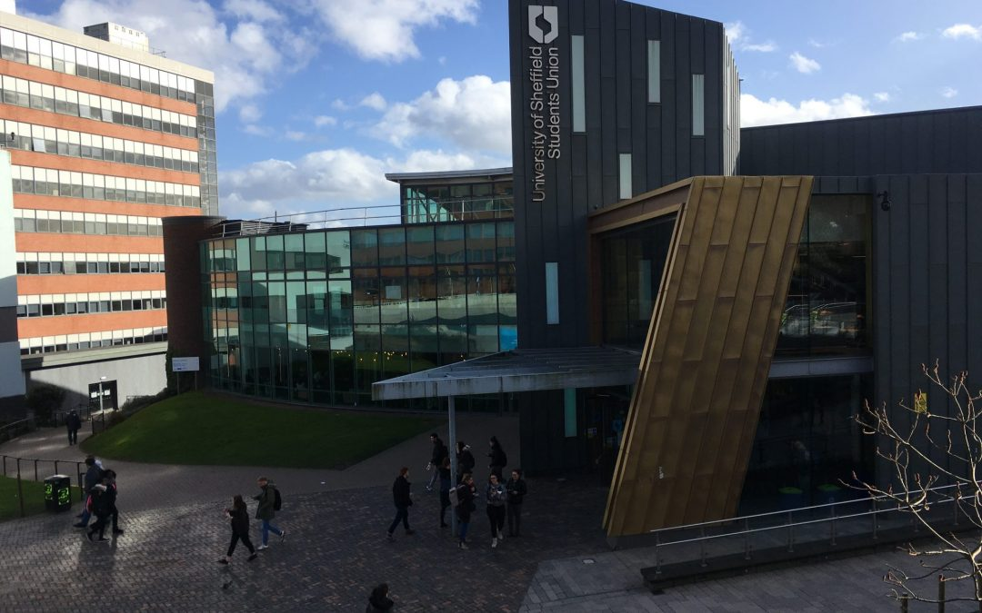 University lecturers' strike action is set to go ahead