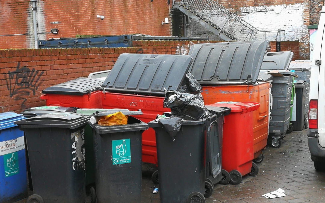 Proposal to trial an Uber-like system for bin collection using GPS tracking in bin lorries
