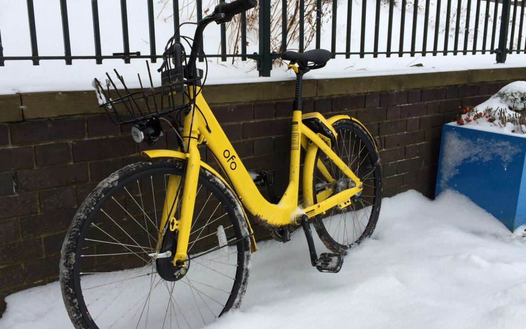 Yellow bike scheme hailed a success as 300 more bikes are to be launched in the city