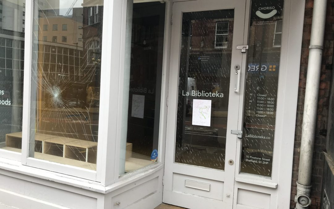 Bookstore owner hopes to thrive despite declining high street