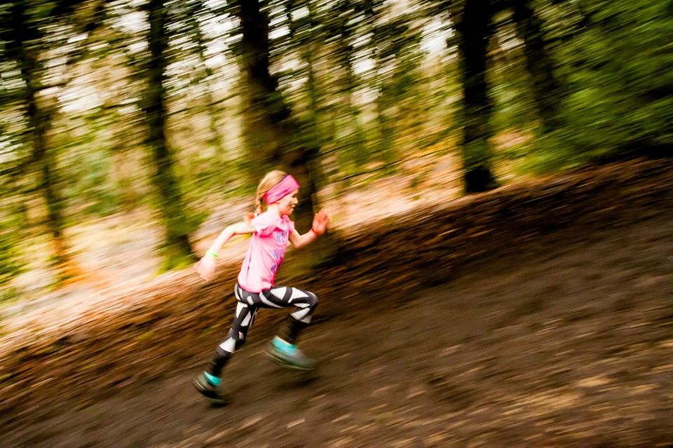 Sheffield gearing up for a vibrant weekend of wood running