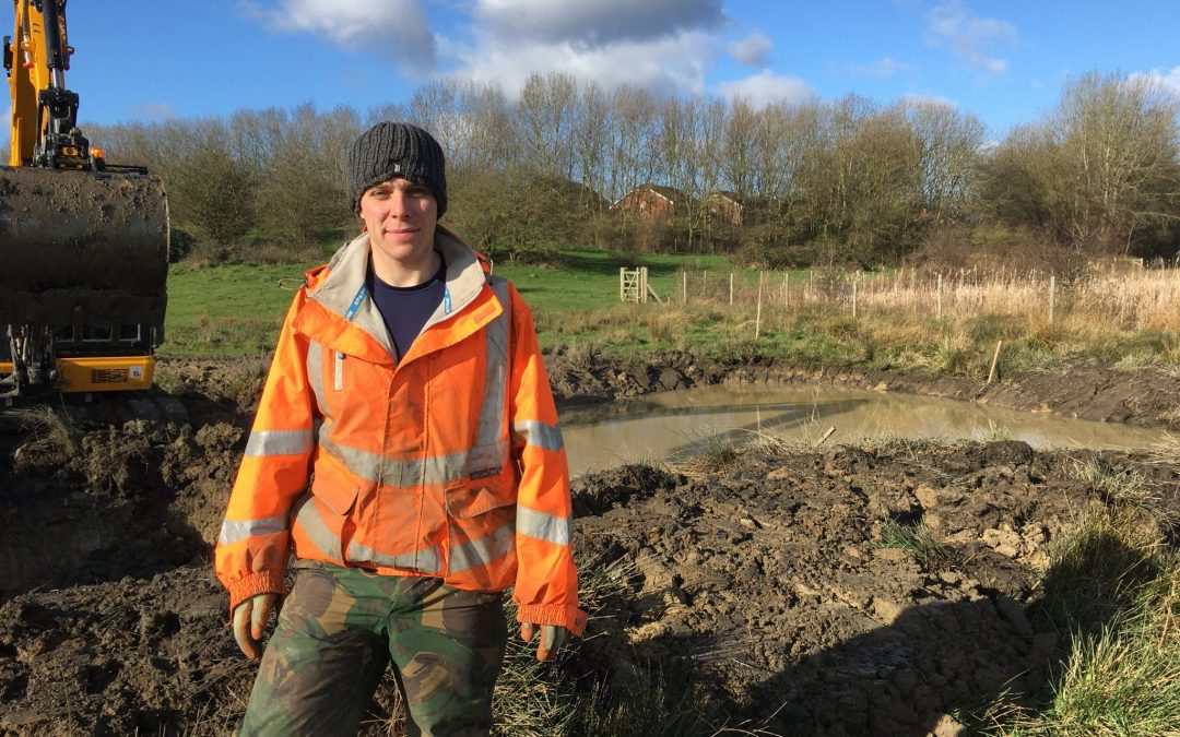 New ponds created in Sheffield to rescue falling newt population