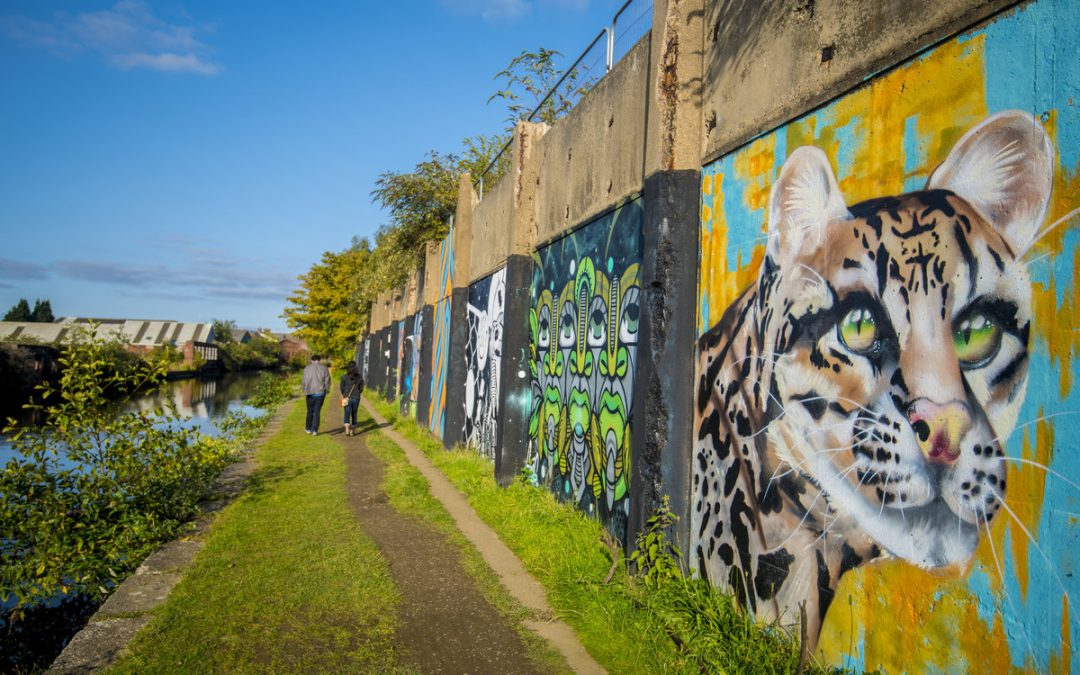 Charity Wants to Hear Favourite Memories of Sheffield Canal
