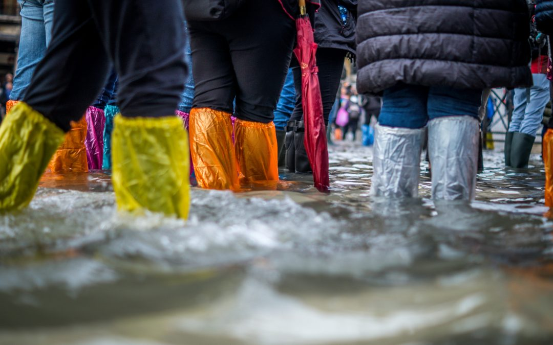 Rotherham Council set to commit £5.8m to flood defence schemes