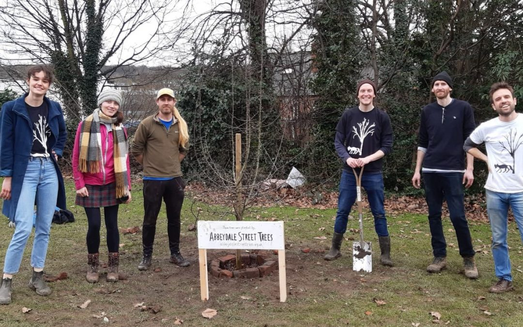 Tree planting group admit hope they will encourage reimagining of Sheffield streets