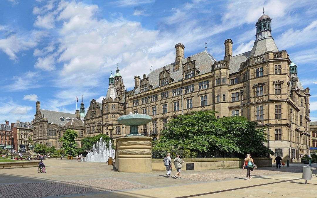 Sheffield's new local area committees will not change the referendum, campaigners say