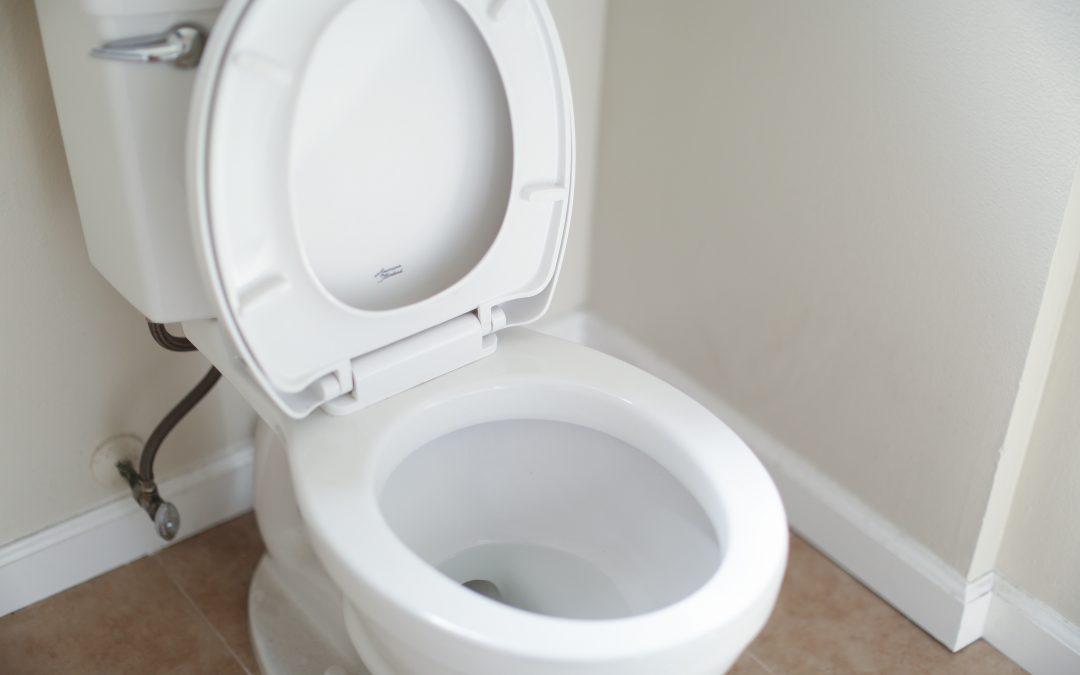 Sheffield Church launch Toilet Twinning scheme during Lent