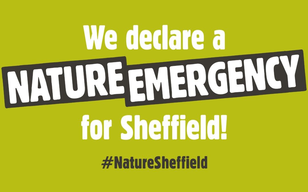 Nature emergency declared in Sheffield by environmental organisations calling out council