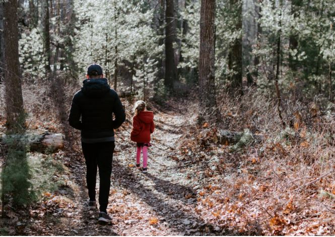 Walking can improve mental health, Sheffield University researchers say